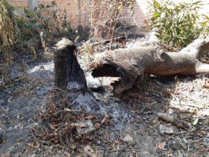Combate a queimadas é reforçado durante a estiagem